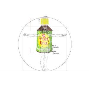 Maskot Fuit Tea - Desain Final
