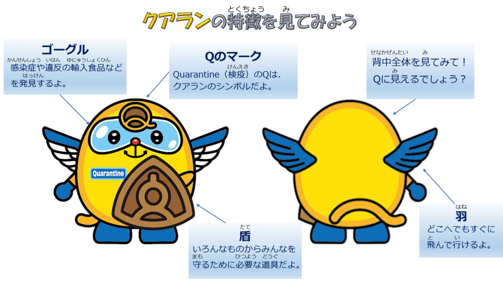 Tampak Depan & Belakang Maskot Quaran Jepang